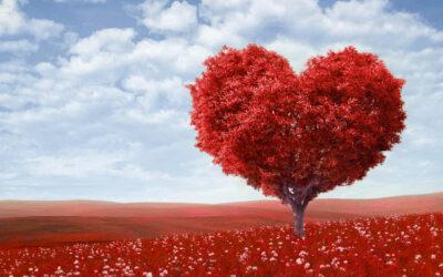 Arouna répond à la question : c'est quoi pour vous la Saint-Valentin ?